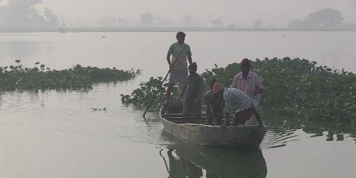 Inde : l'incroyable traitement des eaux usées de Calcutta