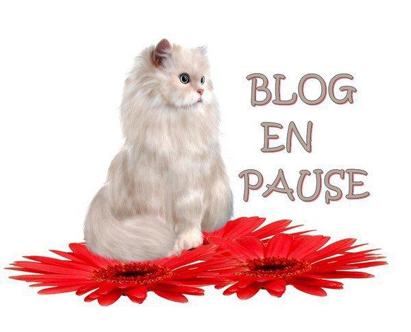 le blog sera en pausse as partir du 13 aout problme aux yeux je fai...