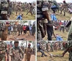 المسلمون بين عز الطاعة وذل المعصية: رابع عشر: قتل المسلمين في أفريقيا الوسطى