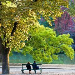 Canicule : plusieurs °C de différence entre rues et parcs, entre espaces urbain et rural (France)