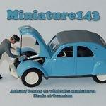 Miniature143 sur eBay