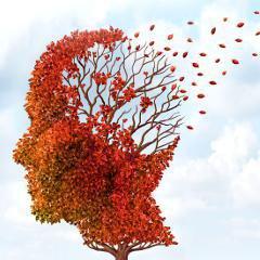 Distinguer la d�mence � corps de Lewy de l'Alzheimer