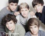 Blog de fiction-OneDirection-x - One Direction <3 Vivre son rêve, ne pas rêver sa vie.