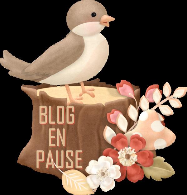Retour au blog de Aideaurencontres le blog sera en pausse as parti...
