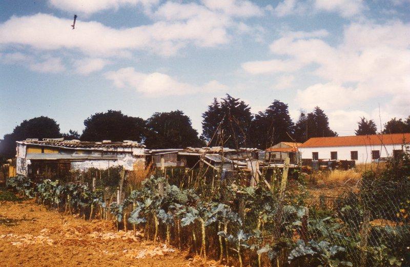 Historique des jardins familiaux de Mireuil-La Rochelle