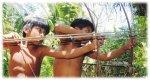 Cineclube e coletivo socioambiental e de defesa de direitos ind�genas Iwak�