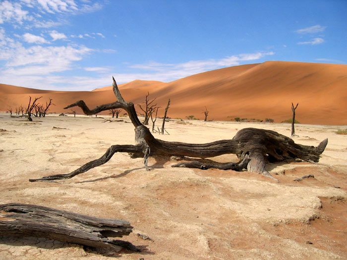 """Desert """"Valley of death"""" in the us ^ ^."""