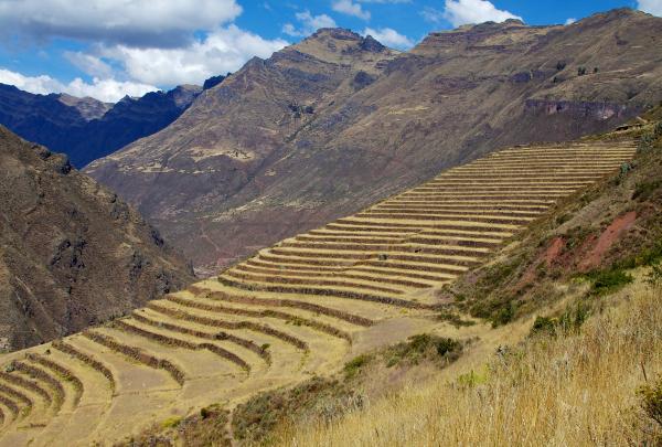 Ruines de Pisac (Vallée sacrée Pérou)