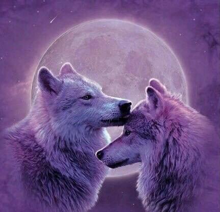 magnifique couple!!