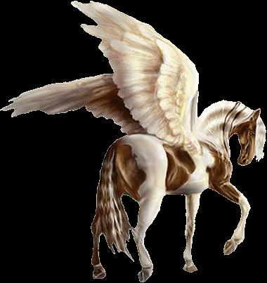 """beau cheval ailé, j""""adore"""