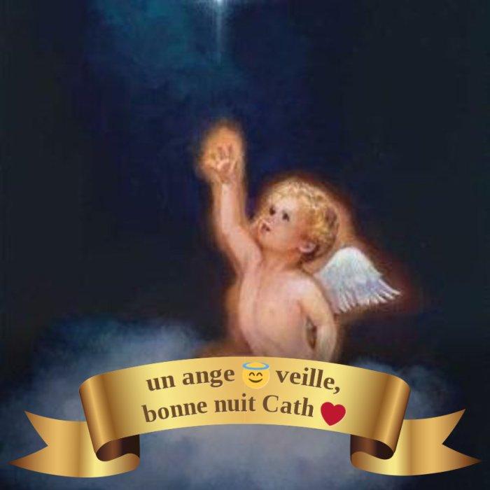 bonne nuit de l'ange!