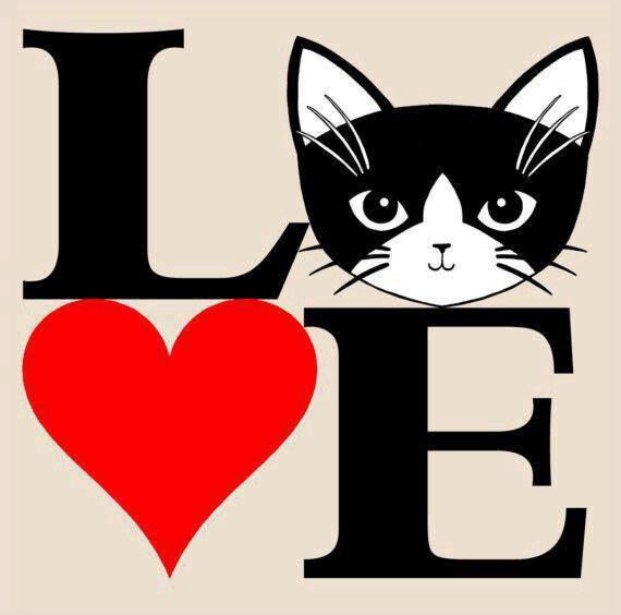 j'aime les chats!