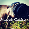 Amarok-Schleich