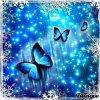 papillonzina