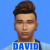 David-SSS2