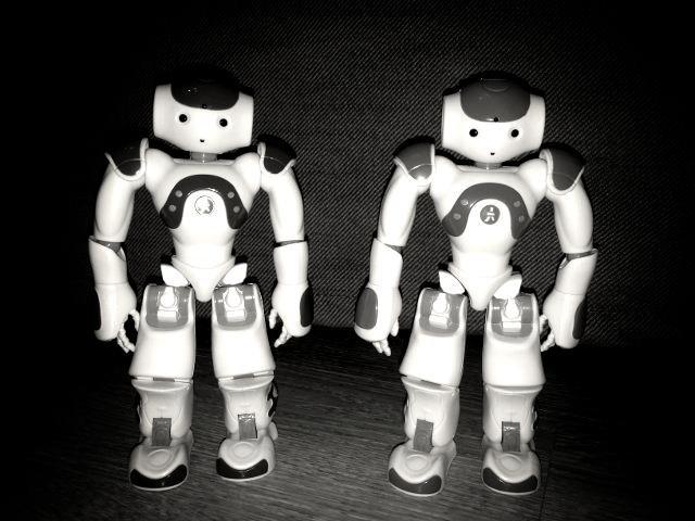Figurines NAO