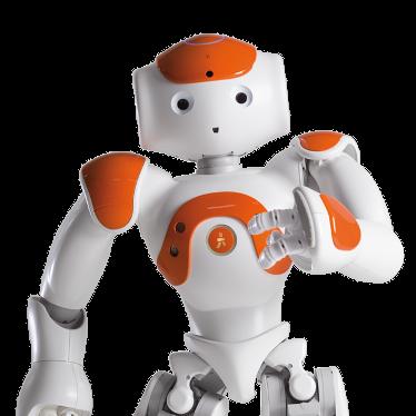 NAO le robot