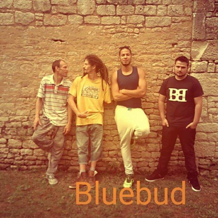 Groupe BlueBud