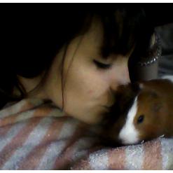 Brownie. ♥