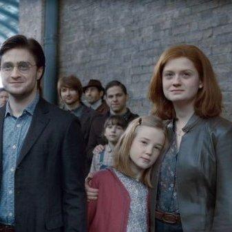 harry et sa famille