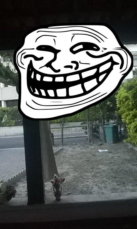 La photo de trol