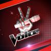 TheVoice-virtuelgame