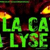 la-cat-a-lyse