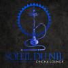 Profil de SOLEIL-DU-NIL-CHICHA