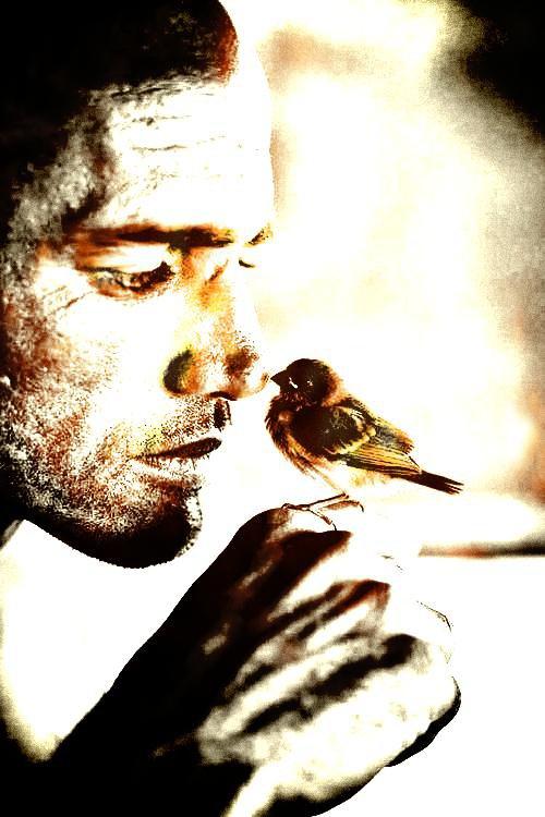 KELLY SLATER et l'oiseau !