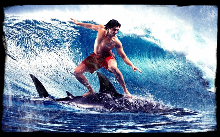 SURFiNG SHARK ;-)