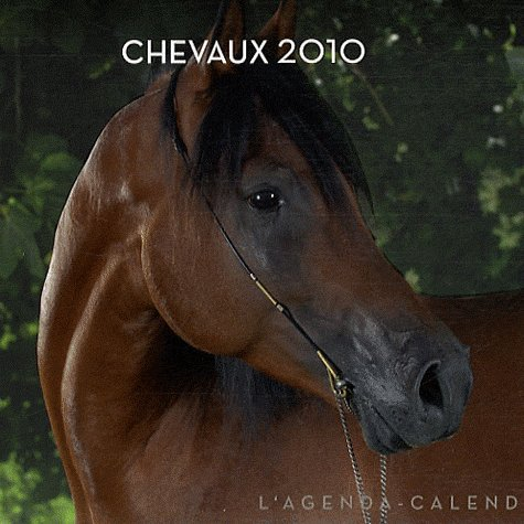 Calendrier 2010 ! ^^