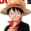 fiction-onepiece