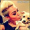 Profil de Cyru-Miley