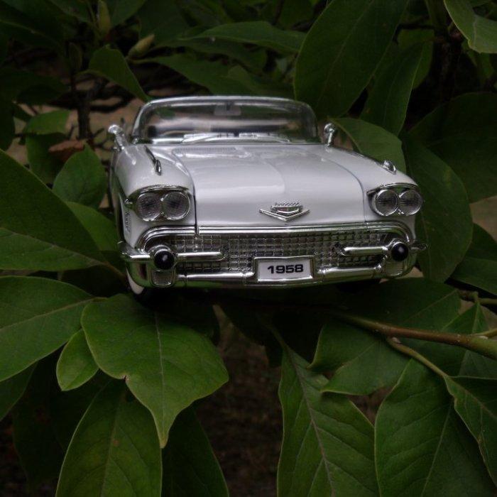 Photo prise maison, ma petite Cadillac chérie dans un arbre