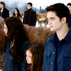 Harry-Potter-Twilight-66