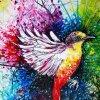 Profil de PEACE-YOURSELF