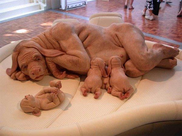 Half Woman,Half Dog..Scary *0*