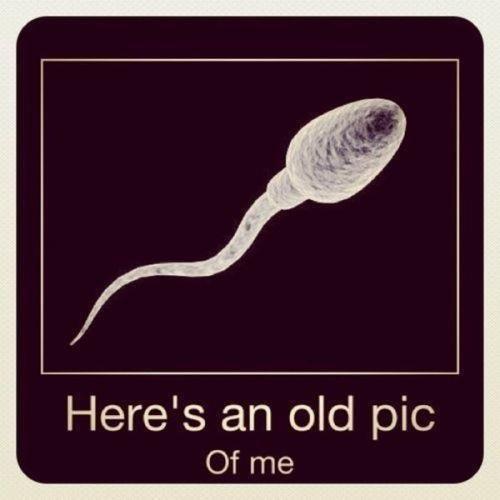 Ive always been handsome  lool