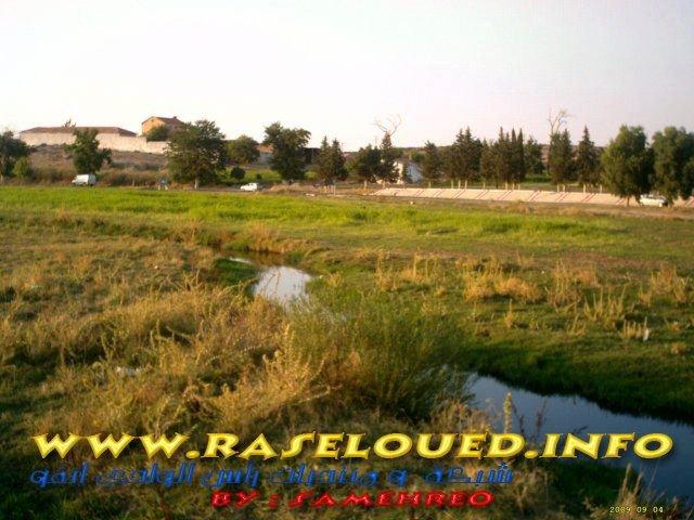 Ras el  oued   info  photo  de ras el oued  by  samehreo