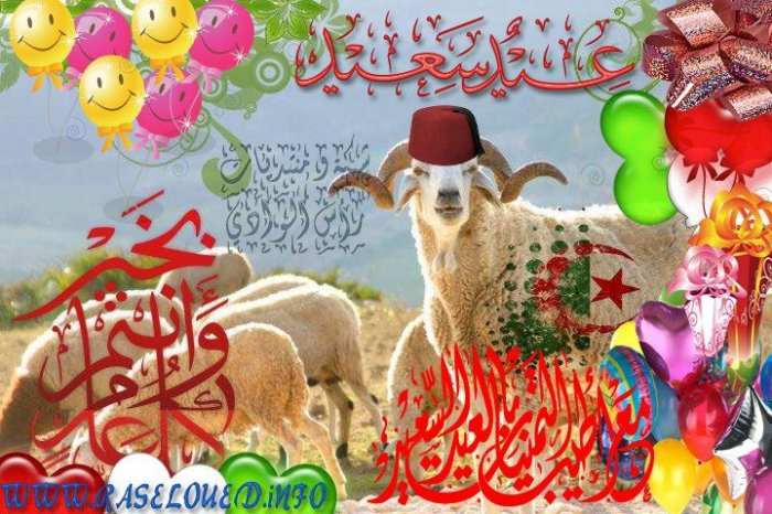 http://raseloued.info