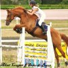 Profil de materiel-d-equitation40