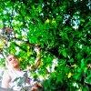 Profil de Nature-music-dream85