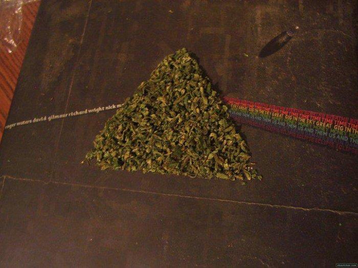 Dark Side Of The Moon (version weed) <3