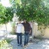 Profil de tawfik-farsi