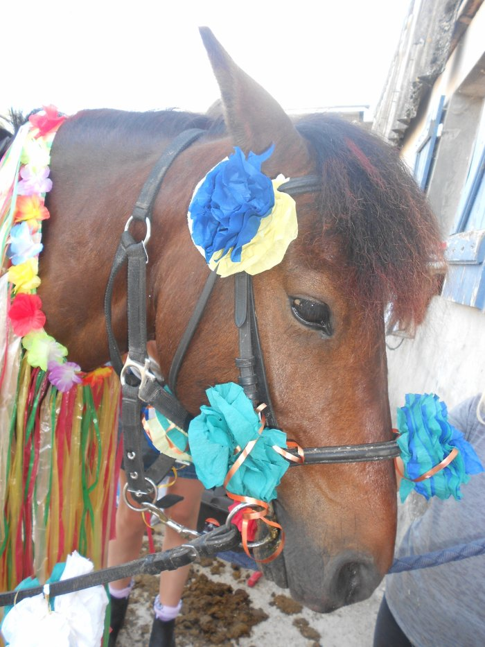 On ta déguiser mon poney!