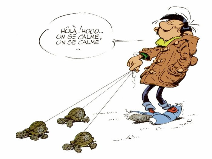 Gaston et ses tortues