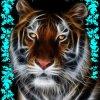 Profil de lover59300