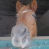 Profil de PetitCake