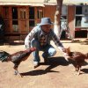 Profil de NIX-GAMEFOWL-FARM
