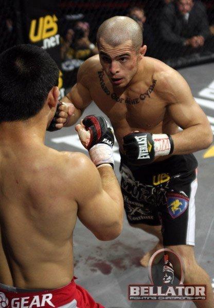 armenian boxing mma fighter wrestling hayastan boxe kavkaz